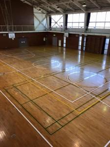 体育館 ライン