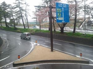 東海道 松並木 防草