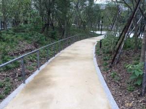 23区内 園路 透水性保水型舗装