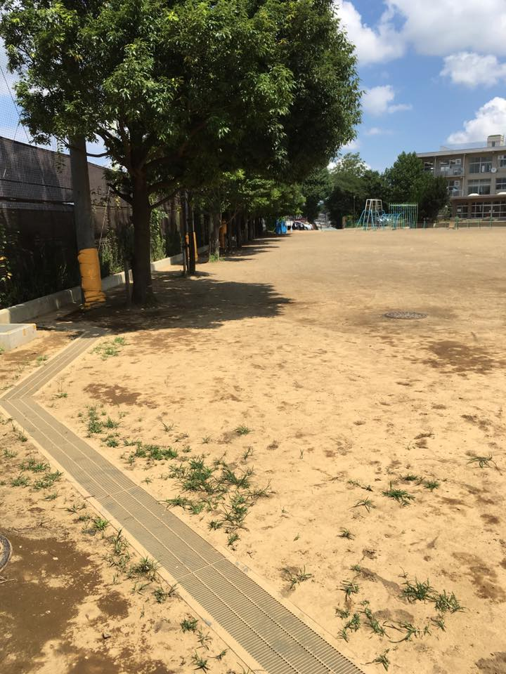 運動場 土壌改良
