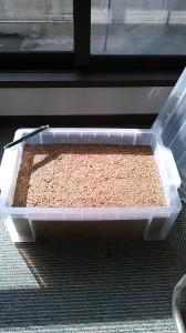 透水性保水型土舗装サンプル