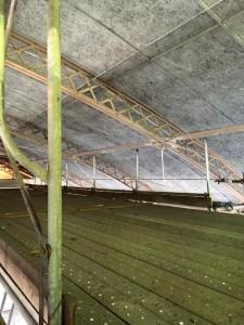 屋内天井落下対策