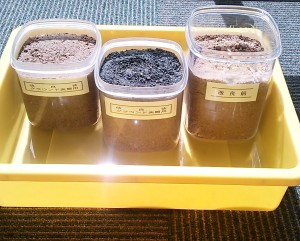透水性保水型土舗装