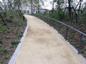都内公園 園路 透水性保水型土舗装2