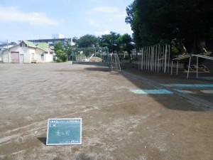 着工前 学校グラウンド 透水性保水型土舗装