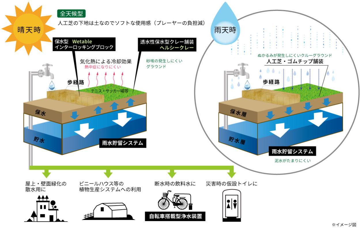 雨天時に保水層が飽和すると雨水貯留システムに雨水が貯水されます。晴天時には、保水層の雨水が気化することで冷却効果が生まれます。雨水貯留システムに貯水された雨水は屋上・壁面緑化の散水用やビニールハウスなどの植物生産システムに利用されたり、断水時の飲料水や災害時の仮設トイレに使用が可能です。